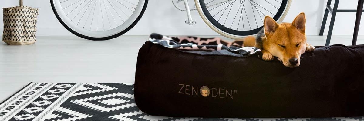 Dog sleeping in a zenDen pet bed