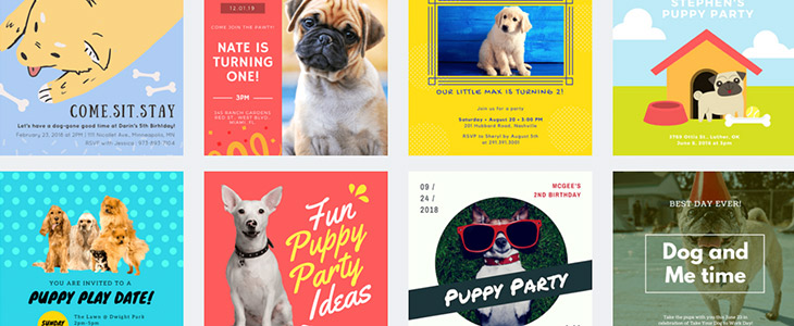 a collection of eight different dog party invitation designs