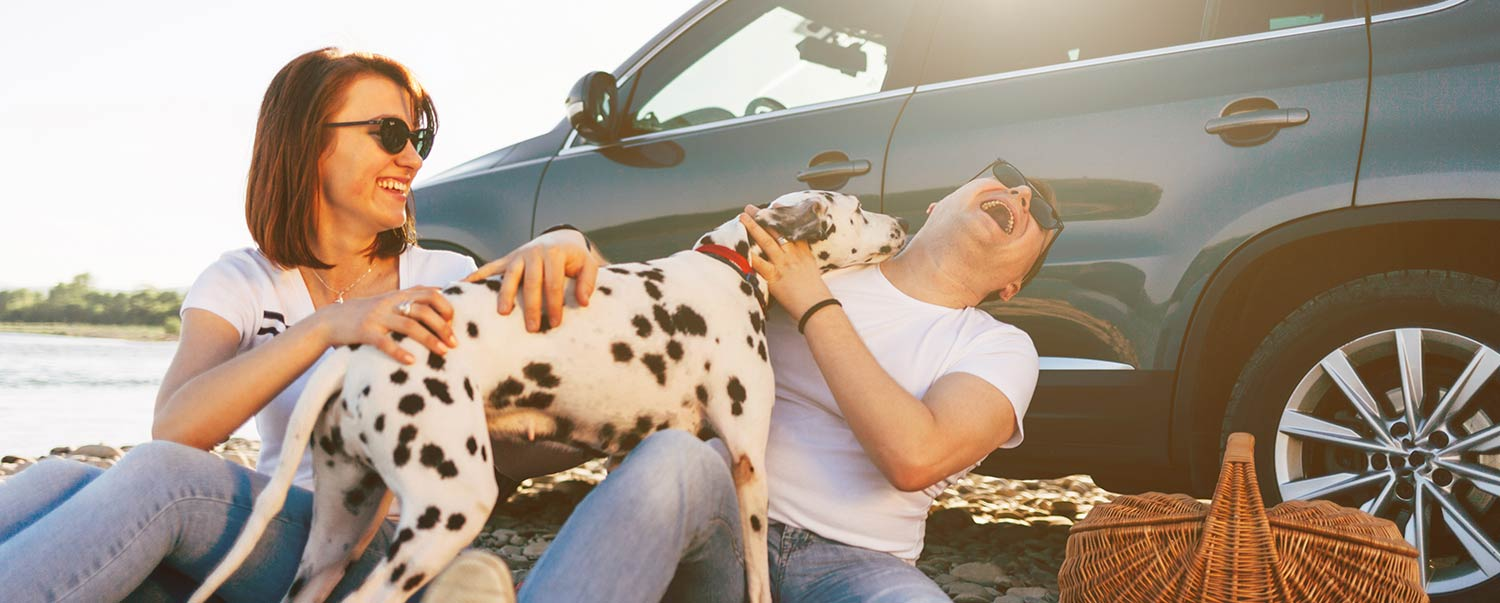 7-things-to-do-with-your-dog-this-labor-day-hero