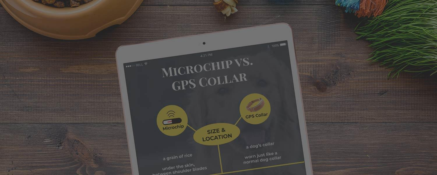 microchip-vs-gps-collar-hero